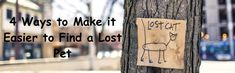 4 Ways to Make it Easier to Find a Lost Pet #pet #dog #cat #lostpet Pet Pet, Dog Cat, Animal Projects, Losing A Pet, Pet Care, Lost, Animals, Animales, Animaux