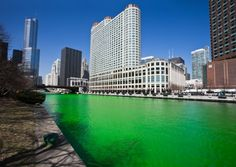 The Chicago River on St. Patrick's Day! This is where I'm at today :) Janine