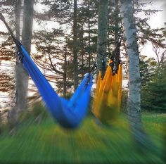 s i m p l i c i t y behold bungee hammock is flexible tried and true unconditionally loving supportive s i m p l i c i t y   behold llc bungee hammocks   behold bungee      rh   pinterest