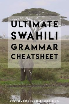 A cheat sheet to Swahili noun classes and associated grammar, including why you should learn Swahili grammar and noun classes.