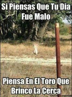 Memes Graciosos Para Compartir Http Crearpostales Com Memes Graciosos Para Compartir 382 Html Vwhatsap Funny Spanish Memes Mexican Humor Memes Funny Faces
