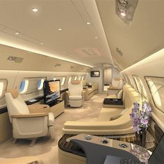 Fancy - Embraer Lineage 1000 Cabin. Now THAT is one of the coolest evacuation transport tool we've ever seen.