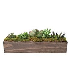 Great for Moms with the proverbial black thumb—and more lasting than your standard flower gift—this set of five succulents, planted in a mahogany trough, is incredibly easy to care for: Just water the soil when it feels dry. The arrangement will survive in shade or full sun, but should be kept out of extreme hot or cold temperatures.