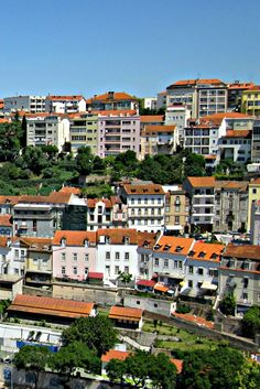 Coimbra in Portugal is a university city where you can spend a day or two visiting the Jardim Botanico and more.