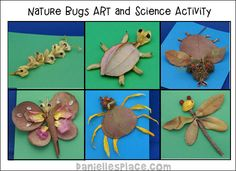 Nature Bugs - Collect dired leaves, twigs and other things from nature to make these creative bugs.