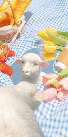 Lamb, Rabbit, Scenery, Kawaii, Instagram Ideas, Illustration, Cute, Minimal, Photography