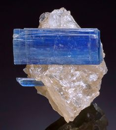 The Mineral Gallery's Auction #111  ||  Aesthetic cluster of translucent to gemmy blue Kyanite crystals with Quartz! Fine blades spread out horizontally and display flat and slanted terminations. The blades are deep blue and lustrous, becoming fully translucent to transparent when back lighted. They are contrasted by the colorless and mostly clear Quartz matrix. From Barra de Salinas, Coronel Murta, Jequitinhonha Valley, Minas Gerais, Brazil. Measures 4.9 cm by 4 cm by 3.2 cm in total size.
