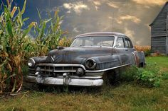 Cadillac Next to corn field,Classic,nice photo  Lets get her running & drivin'
