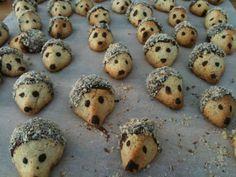 Hedhog Cookies