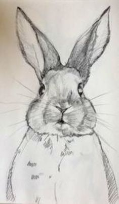 Pencil sketch Sweet bunny By Joan Ines Studio bunny in s joan pencil sketch studio sweet # Cool Art Drawings, Pencil Art Drawings, Realistic Drawings, Art Drawings Sketches, Pencil Sketching, Pencil Sketch Art, Drawings Of Animals, Beautiful Pencil Sketches, Simple Drawings