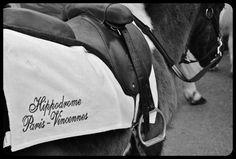 Hippodrome de Paris/Vincennes 2015