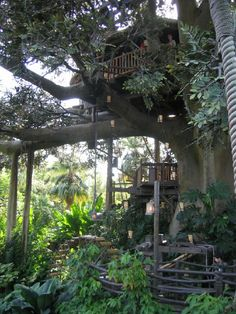 Swiss Family Robinson Tree house in Disney World! Swiss Family Robinson Treehouse, Cool Tree Houses, Tree House Designs, Diy Holz, Tree Tops, In The Tree, Interior Exterior, Play Houses, Beautiful Homes