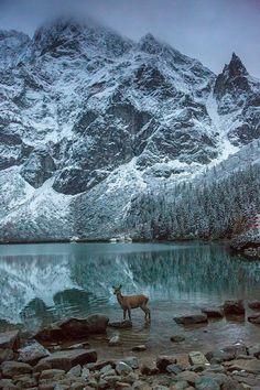 Morskie Oko Lake,Tatras, Poland Do you need a #lawyer in #Poland? http://www.lawyerspoland.eu/confidentiality-clause-in-poland