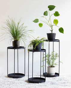 Clara considers which plants to display on the plant stand. In stores now. Available in two sizes, prices from DKK 98,00 / SEK 133,00 / NOK 139,00 / EUR 13,73 / ISK 2669 / GBP 12.24