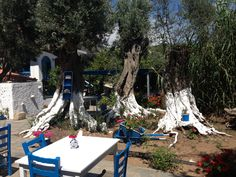 Taverne Stella in Ort Balos Samos, Patio, Outdoor Decor, Places, Yard, Terrace