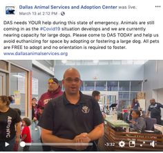 Dallas Animal Services Director Ed Jamison shares frank and direct information about the shelter's need and exactly how the community can help Adoption Center, Marketing Communications, Dallas, Leadership, Community, Animal, Animals, Animaux, Animales