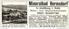 Original-Werbung/ Anzeige 1900 - MINERALBAD HERMSDORF - ca. 110 x 40 mm