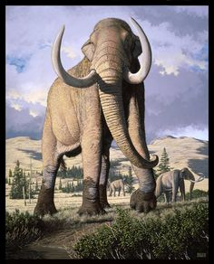 Columbian Mammoth by Carl Buell. It must have been a magnificent sight.