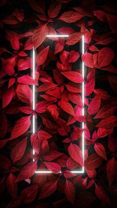 Iphone Wallpaper Lights, Neon Light Wallpaper, Iphone Wallpaper Photos, Graphic Wallpaper, Dark Wallpaper, Aesthetic Iphone Wallpaper, Galaxy Wallpaper, Nature Wallpaper, Aesthetic Wallpapers