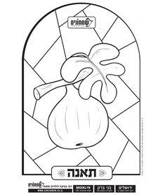 7 fruits for tu bshvat coloring pages | Tu b'Shvat Hebrew Coloring Page – Shivat haMinim - 7 ...