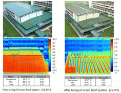green roof top saves energy as show by thermo image