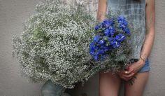 www.flowerswill.eu