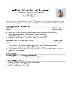 Resume Perfect How To Write The Perfect Resume  Perfect Resume And Clever