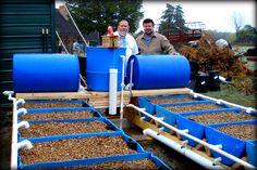 Barrel-Ponics eBook « Aquaponics and Earth Aquaponics and Earth