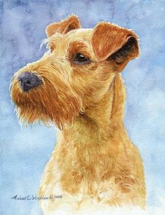 Irish Terrier Art – Michael Steddum