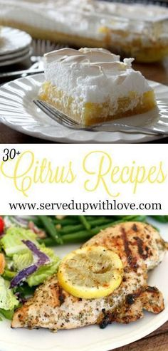 30+ Citrus Recipes from Served Up With Love. Recipes from all the best bloggers from main dishes to desserts. This is one not to miss. http://www.servedupwithlove.com