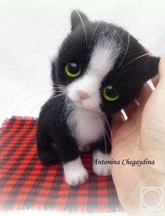 Chegaydina Antonina.