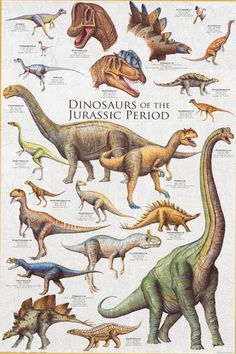 Anawesome poster of Dinosaurs from the Jurassic Period - Stegosaurus, Velociraptor, and many more! Perfect for fansof the Jurassic Park movies! Fully licensed