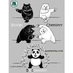 I like pandas they are so cute🐼 From - Bildung GG Learn Biology, Biology Jokes, Physics Memes, Funny Science Jokes, Science Puns, Chemistry Jokes, Nerd Jokes, Science Education, Science Space