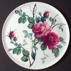Roy Kirkham English Rose at Replacements, Ltd Exotic Flowers, Purple Flowers, Yellow Roses, Pink Roses, Decoupage Plates, Painted Plates, Daffodil Flower, Flower Art, Cactus Flower