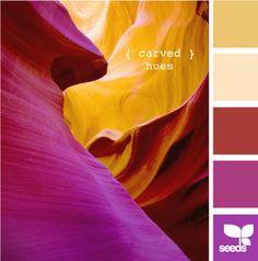 carved hues by design seeds