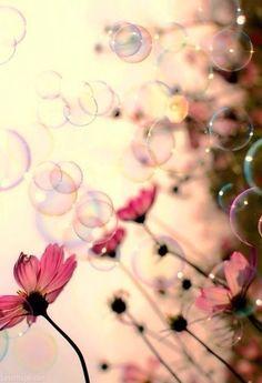 flores e bolhas de sabão