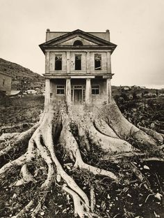 Jerry Uelsmann. Untitled. ND