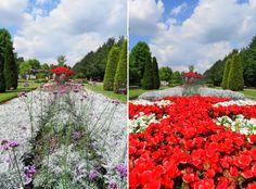 regents park english garden london 1
