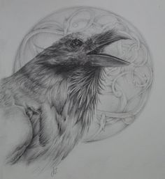 Huginn, Odin's Raven Original Viking Graphite Drawing