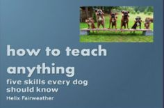Karen Pryor Clicker Training | The Leader in Positive Reinforcement Training