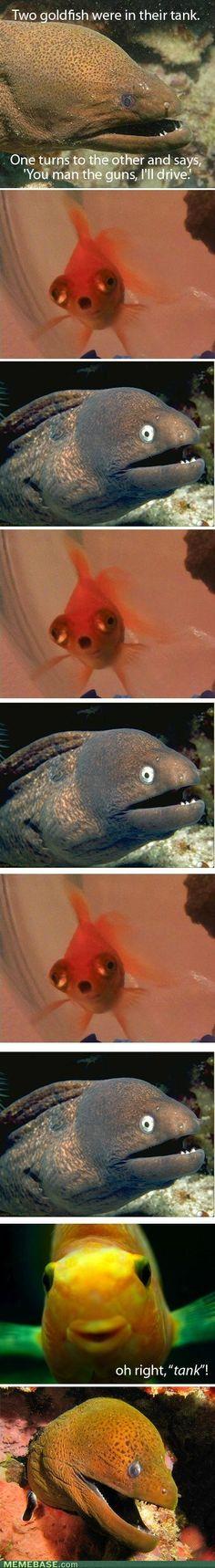 Bad Joke Eel featuring Slow Joke Fish