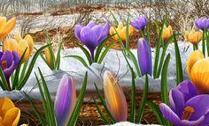 весенняя пора , springtime