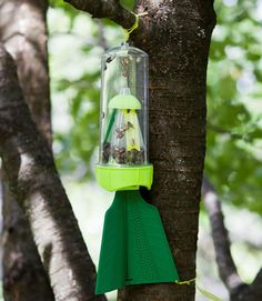 Reusable Stink Bug Trap lures these pest insects within a 30-foot radius using multiple pheromone attractants | Harris Seeds