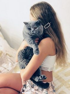 MY GORGEOUS BRITISH BLUE SHORTHAIR BOY NAMED HUGO   Birmingham, West Midlands   Pets4Homes Pet Breeds, Puppy Breeds, Cat Skin, British Shorthair Kittens, Kitten For Sale, Animal Activities, West Midlands, Large Animals
