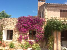 Mallorca jardin y paisaje
