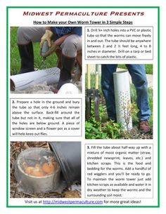 Midwest Permaculture Presents How to Make Your Own Worm Tower in 3 Simple Steps 494x640 How To Build a Worm Tower