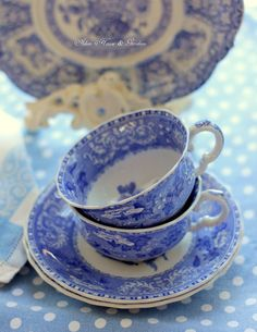Aiken House & Gardens: French Garden Blues, Spode blue tea cups