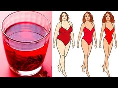 Drink This Tea Every Day to Lose Weight Naturally Health Benefits of Hibiscus Hibiscus Tea, Hibiscus Flowers, Hibiscus Plant, Cottage Cheese Nutrition, Nutrition Tracker App, Yoga Detox, Lose Weight Naturally, Regular Exercise, Detox Tea