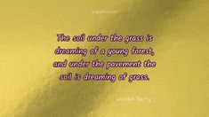 Dreams Quote By Wendell Berry,