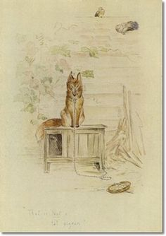 Beatrix Potter - Early Ideas for Illustrated Books
